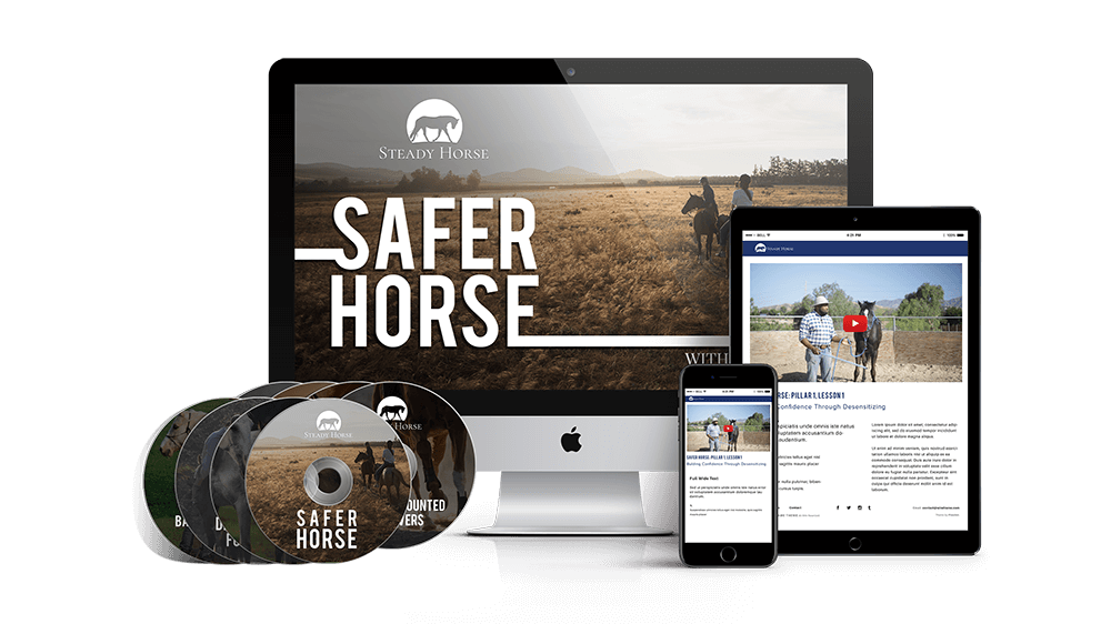 safer-horse-dvd-and-digital-mockup-1-smaller-tinified