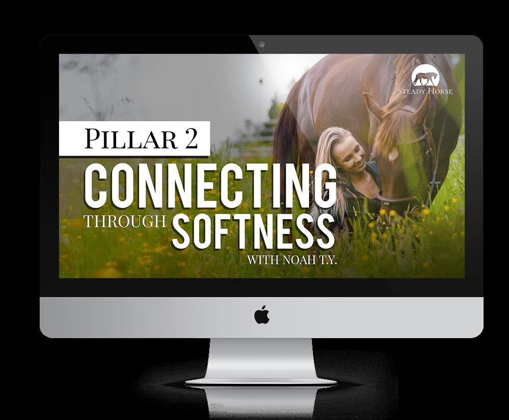 sh-pillar-2-on-screen-smaller-tinified