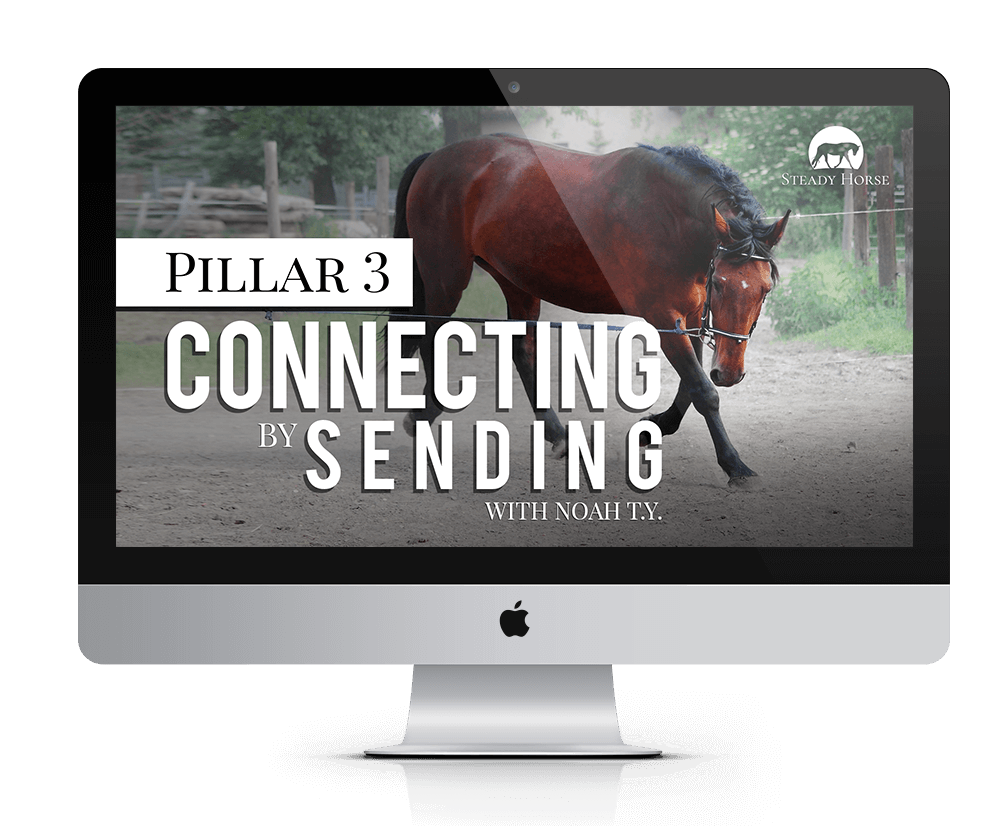 sh-pillar-3-on-screen-smaller-tinified