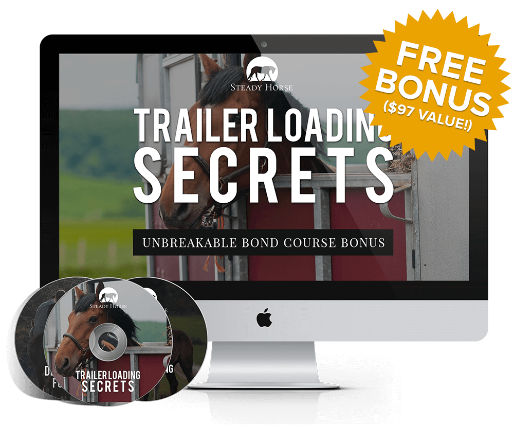 stack-trailer-loading-bonus-with-badge-smaller-tinified