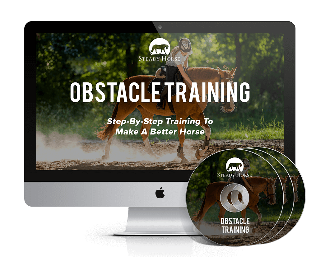 obstacle-training-disks-and-screen-mockup-smaller1